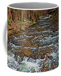 Coffee Mug featuring the photograph Emory Gap Branch by Paul Mashburn