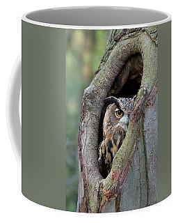 Eurasian Eagle-owl Bubo Bubo Looking Coffee Mug
