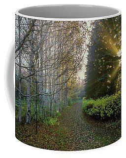 Coffee Mug featuring the photograph Evening Light by Vladimir Kholostykh
