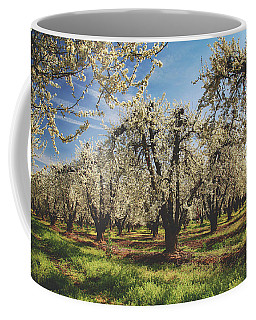 Coffee Mug featuring the photograph Everything Is New Again by Laurie Search