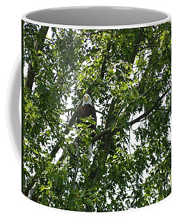 Face The Eagle Coffee Mug