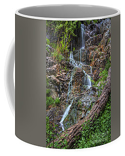 Fairy Falls Coffee Mug