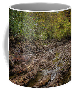 Fall At Fane Creek Coffee Mug