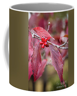 Fall Color 5528 55 Coffee Mug