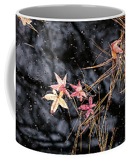 Fall Color 5528 56 Coffee Mug