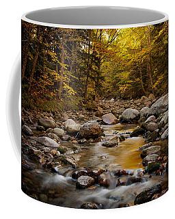 Fall On The Gale River Coffee Mug