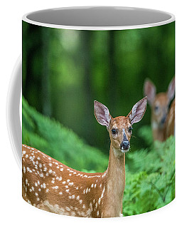Fawns Coffee Mug