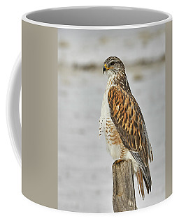 Coffee Mug featuring the photograph Ferruginous Hawk by Doug Herr