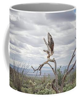 Ferruginous Hawk Coffee Mug by Tam Ryan