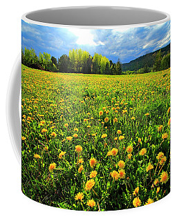 Field Of Dandelions Coffee Mug