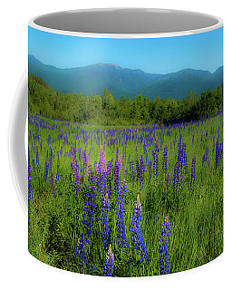 Coffee Mug featuring the photograph Field Of Lupines by Brenda Jacobs