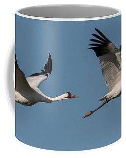 Grus Americana Coffee Mugs