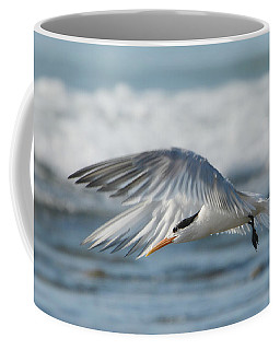 Flight Of The Tern Coffee Mug by Fraida Gutovich
