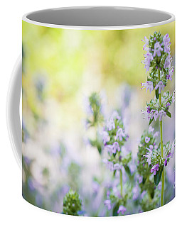 Coffee Mug featuring the photograph Flowering Thyme by Elena Elisseeva