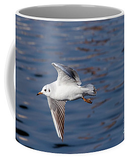 Flying Gull Above Water Coffee Mug by Michal Boubin
