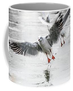 Flying Seagulls Coffee Mug