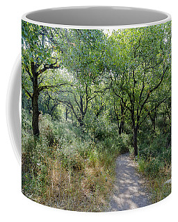 Forest Trail Coffee Mug