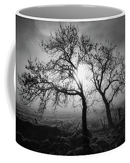 Coffee Mug featuring the photograph Forever Buddies by Jeremy Lavender Photography