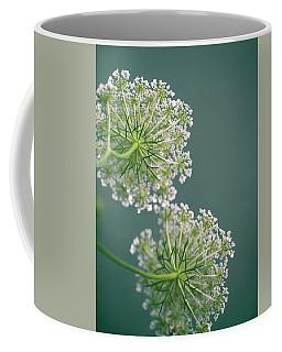 Fragile Dill Umbels On Summer Meadow Coffee Mug