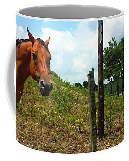 Friendly Stallions Coffee Mug