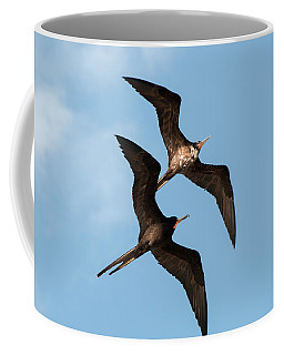 Frigates At Isla Mujeres Coffee Mug