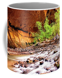 Coffee Mug featuring the photograph Gentle Flow by Scott Kemper