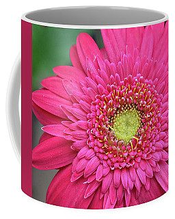 Gerbera Daisy Coffee Mug by Ronda Ryan