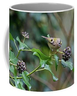 Goldcrest Coffee Mug by Matt Malloy