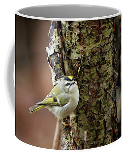 Golden-crowned Kinglet Coffee Mug by Gary Hall