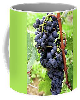 Grapevine Coffee Mug