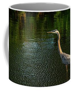 Great Blue Heron Delray Beach Florida Coffee Mug