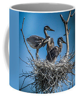 Great Blue Heron On Nest Coffee Mug