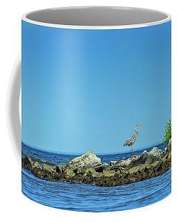 Great Blue Heron On The Chesapeake Bay Coffee Mug