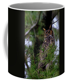 Coffee Mug featuring the photograph Great Horned Owl by Gary Hall
