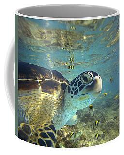 Green Sea Turtle Balicasag Island Coffee Mug