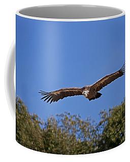Griffon Vulture Gyps Fulvus Coffee Mug