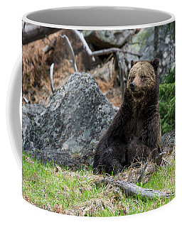 Grizzly Manor Coffee Mug by Scott Warner