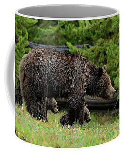 Grizzly Sow With Triplets Coffee Mug by Yeates Photography