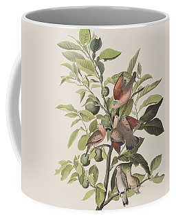 Ground Dove Coffee Mug