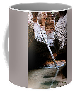 Coffee Mug featuring the photograph Hanging By A Moment by Brandy Little