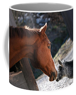 Coffee Mug featuring the photograph Hello Friend by Angela Rath