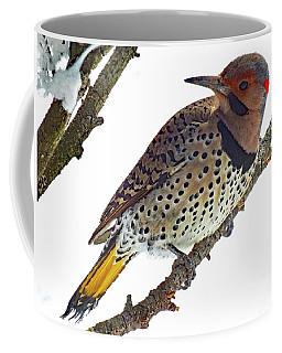 Hello Gorgeous Northern Flicker Coffee Mug