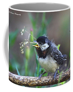 Hello World Coffee Mug