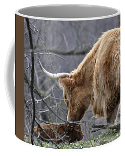 Highland New Born Coffee Mug