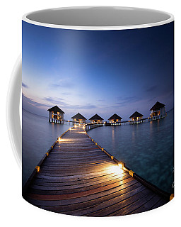 Coffee Mug featuring the photograph Honeymooners Paradise by Hannes Cmarits