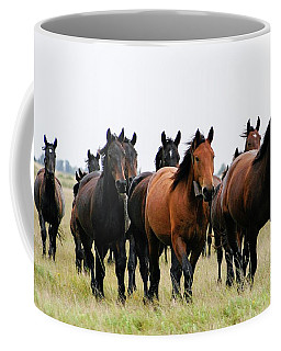 Horse Herd On The Hungarian Puszta Coffee Mug