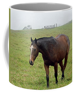 Horse In The Fog Coffee Mug
