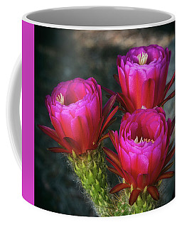 Coffee Mug featuring the photograph Hot Pink  by Saija Lehtonen