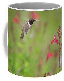 Hummingbird And Sage Coffee Mug