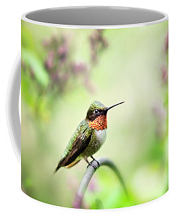 Coffee Mug featuring the photograph Hummingbird II by Christina Rollo